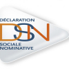 Logo Déclaration Sociale Nominative